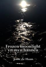 17810587-Frozen-moonlight-yn-myn-hannen-Josse-de-Haan